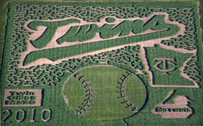 Minnesota Twins Corn Maze