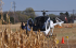 Helicopter Rides at the Twin Cities Harvest Festival